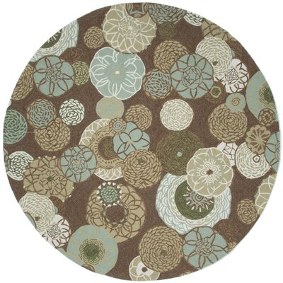 Derby Driftwood Outdoor Area Rug Rug Size: Round 8