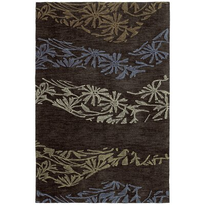 Susanne Chocolate Area Rug Rug Size: Rectangle 9 x 12