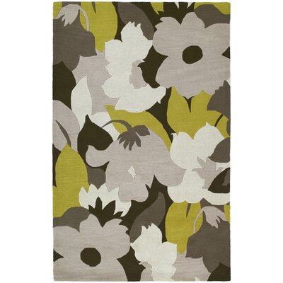 Dodson Wasabi Area Rug Rug Size: Rectangle 76 x 9