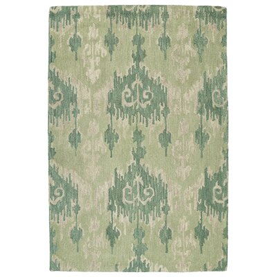 Dodge Green Area Rug Rug Size: Rectangle 76 x 9