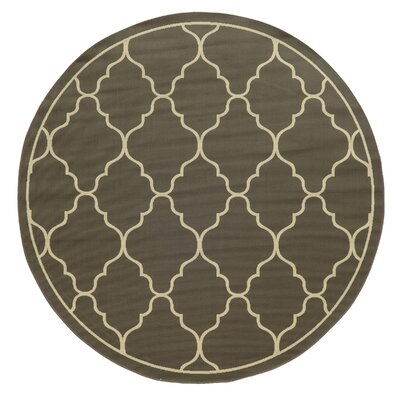 Heath Geometric Gray/Ivory Stain Resistant Indoor/Outdoor Area Rug Rug Size: 53 x 76