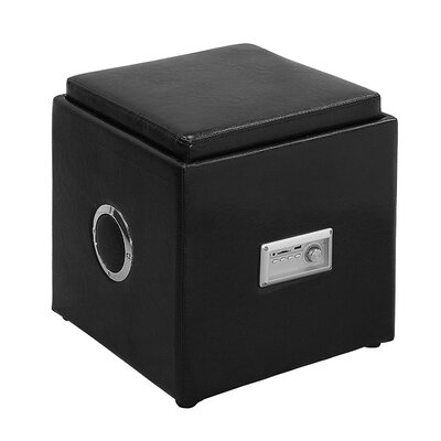 Waller Leather Speaker Ottoman Upholstery: Black