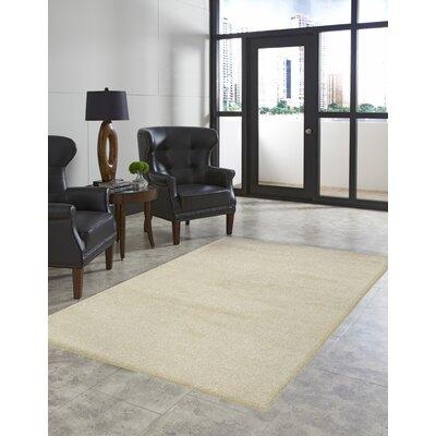Deray Plain Beige Indoor/Outdoor Area Rug Rug Size: 410 x 76