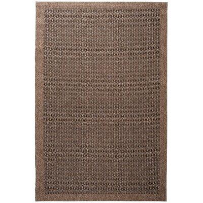 Felipe Spice Indoor/Outdoor Area Rug Rug size: 93 x 123