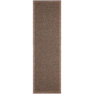 Felipe Spice Indoor/Outdoor Area Rug Rug size: Runner 26 x 11