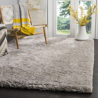 Rosa Shag Hand-Tufted Sliver Area Rug Rug Size: Rectangle 5 x 8