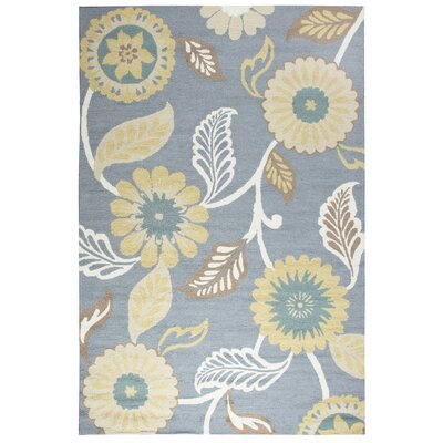 Evangeline Hand-Tufted Gray/Off White Indoor/Outdoor Area Rug Size: 76 x 96