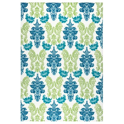 Terry Green/Blue Indoor/Outdoor Area Rug Rug Size: 53 x 77
