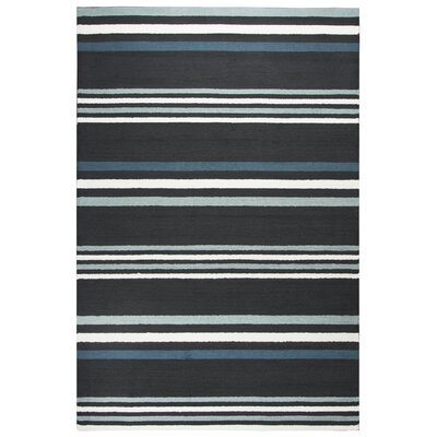 Evangeline Hand-Tufted Charcoal/Teal Indoor/Outdoor Area Rug Size: Rectangle 9 x 12