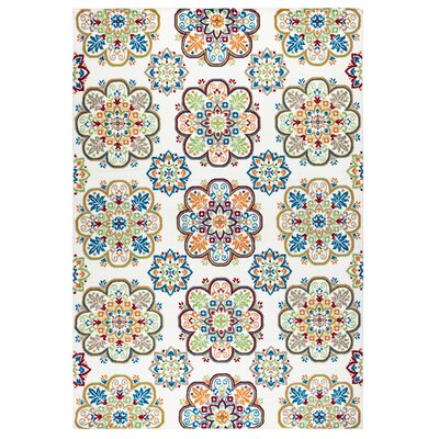 Terry Indoor/Outdoor Area Rug Rug Size: Runner 23 x 77