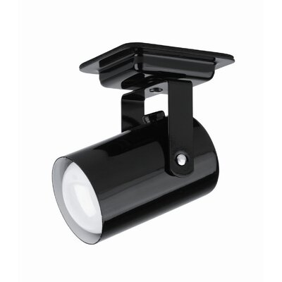 Park Avenue Mini Spot Light