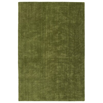 Doutzen Hand-Loomed Fern Indoor/Outdoor Area Rug Rug Size: 36 x 56