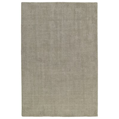 Allibert Hand-Loomed Graphite Indoor/Outdoor Area Rug Rug Size: Rectangle 8 x 10