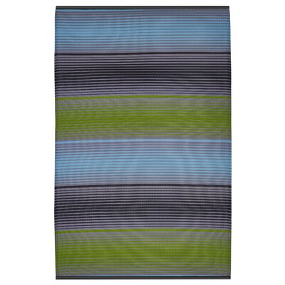 Reva Hand Woven Green/Blue/Black Indoor/Outdoor Area Rug Rug Size: 5 x 8