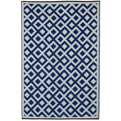 Reva Hand Woven Blue Indoor/Outdoor Area Rug Rug Size: 6 x 9