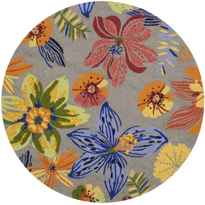 Stacy Outdoor Area Rug Rug Size: Round 4