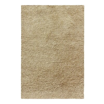 Catharine Hand-Woven Beige Area Rug Rug Size: Rectangle 8 x 10