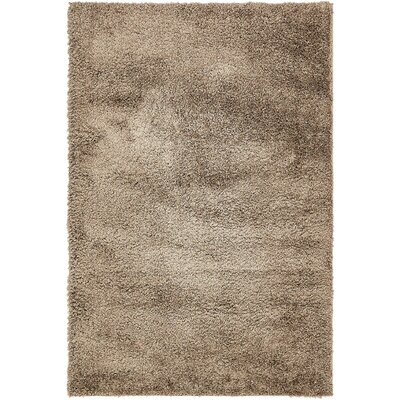 Virgie Solid Shag Brown Area Rug Rug Size: Rectangle 4 x 6