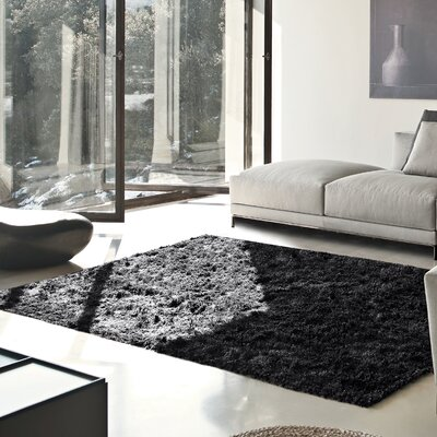 Catharine Hand-Woven Black Area Rug Rug Size: Rectangle 5 x 8