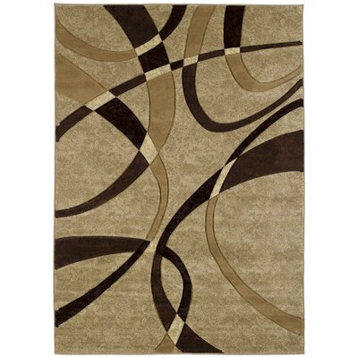 Havana Chocolate Rug Rug Size: Rectangle 110 x 3