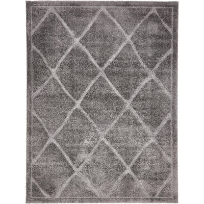 Chester Dark Gray Area Rug Rug Size: Runner 27 x 10