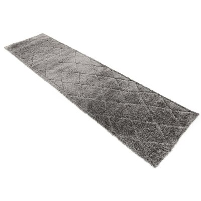 Chester Dark Gray Area Rug Rug Size: Runner 2 x 67