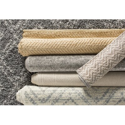 Alexa Gray Area Rug Rug Size: Rectangle 53 x 76