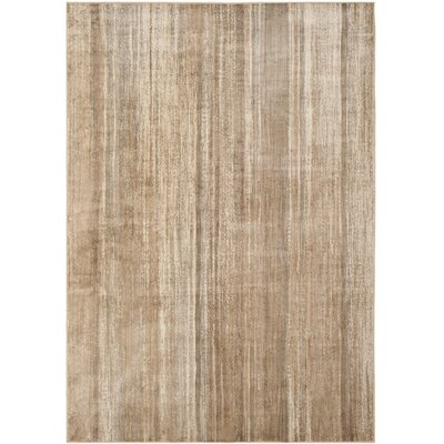 Zelda Area Rug Rug Size: Rectangle 53 x 76
