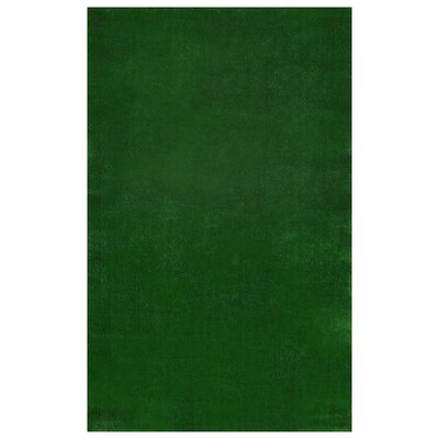Tamera Artificial Grass Turf Solid Design Green Indoor/Outdoor Area Rug Rug Size: Rectangle 60 x 73
