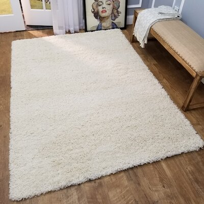 Burns Single Solid Ivory Shag Area Rug Rug Size: Rectangle 33 x 48