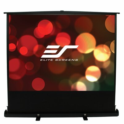 ezCinema White 60 diagonal Portable Projection Screen