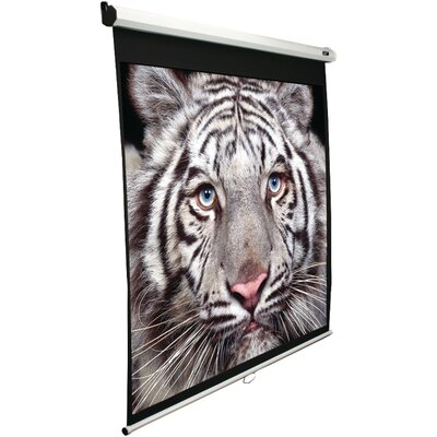 B Series Manual Projection Screen Viewing Area: 49 H x 87 W