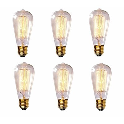 60W Vintage Incandescent Light Bulb