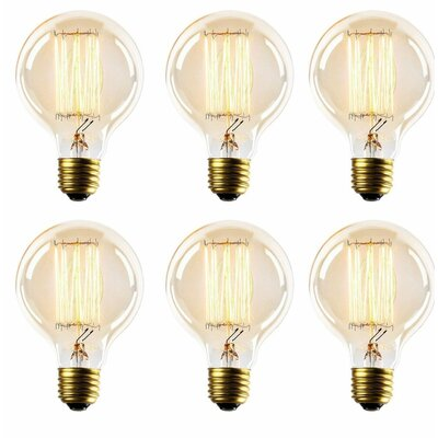 Thomas Edison Globe Incandescent Vintage Filament Light Bulb G25INC-6