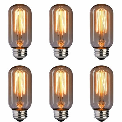60W E26/Medium (Standard) Incandescent Vinatge Filament Light Bulb T45INC-6
