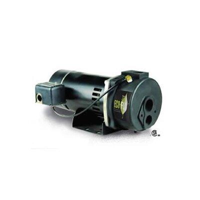 1 HP Water Utility Pump
