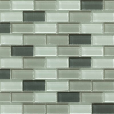 Essen 1 x 2 Glass Subway Tile in Pebble Creek