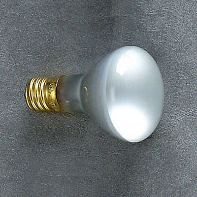 Incandescent Bulb Type R for the Mini Pin-Up Lite (25W).