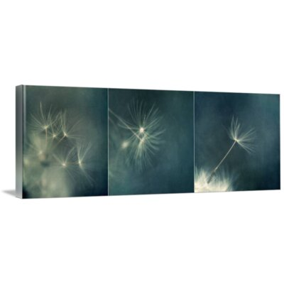 'If I Had One Wish Triptychon' Photographic Print on Canvas Size: 11