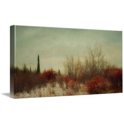 'Signs of Winter' Photographic Print on Canvas Size: 12
