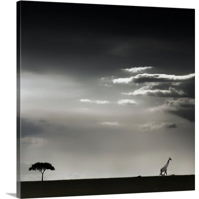 Fifteen Minutes of Happiness by Piet Flour Photographic Print on Canvas Size: 24