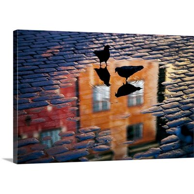 Pigeons by Allan Wallberg Photographic Print on Canvas Size: 32