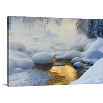 Siberia -37 Degrees by Dmitry Dubikovskiy Photographic Print on Canvas Size: 16