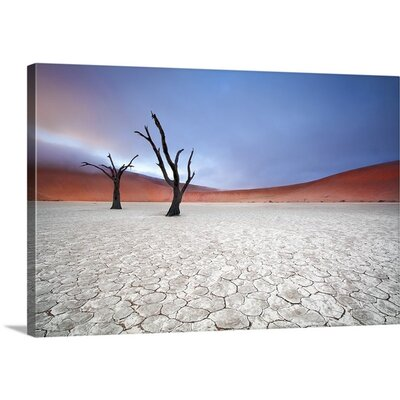 Mist Over Deadvlei by Ben Mcrae Photographic Print on Canvas Size: 32
