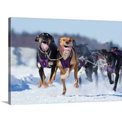 The Athletes by Mircea Costina Photographic Print on Canvas Size: 35