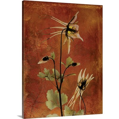 Columbine X-Ray by Albert Koetsier Photographic Print on Wrapped Canvas 1937191_29_12x16_none