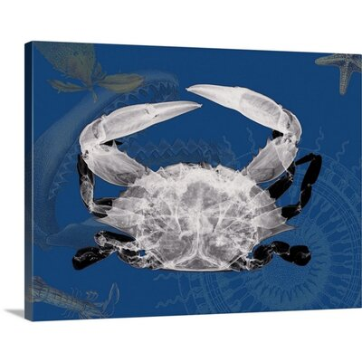 Crab X-Ray by Albert Koetsier Photographic Print on Wrapped Canvas 1937192_29_16x12_none