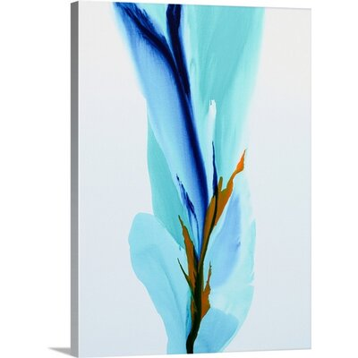 Spring's Calling Card by Patricia Coulter Painting Print on Wrapped Canvas 2414728_1_18x24_none