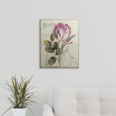 """'Garden View II Tulip' by Lisa Audit Graphic Art Print Size: 20"""" H x 17"""" W x 1"""" D, Format: Black Framed 1059295_15_12x15_none"""