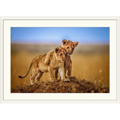 "'Brothers for Life' by Jeffrey C. Sink Photographic Print Format: White Frame, Size: 17"" H x 23"" W x 1"" D 2357272_21_18x12_none"
